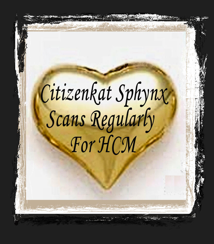 Citizenkat Sphynx Scans for HCM